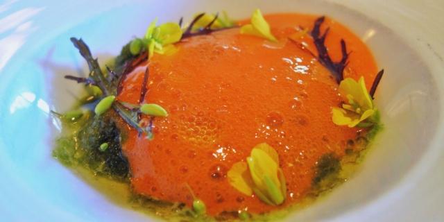 Granita mit Karottenschaum