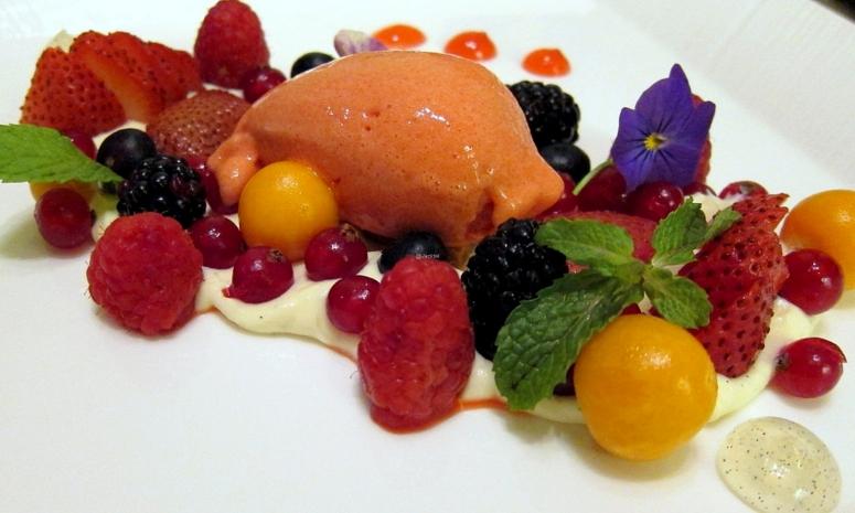 Beeren-Dessert (2)